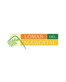 Logo_Lomas